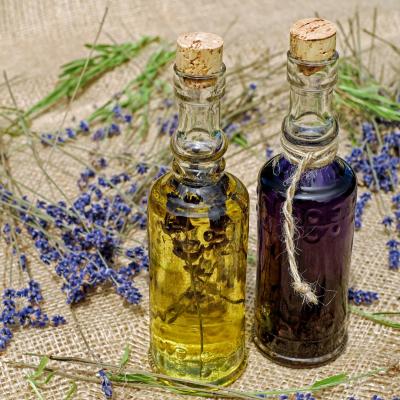 Herbal shrubs, switchels and vinegars workshop