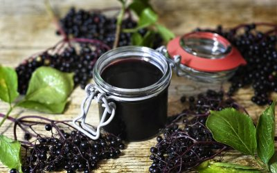 Homemade Elderberry Syrup for Winter Wellness