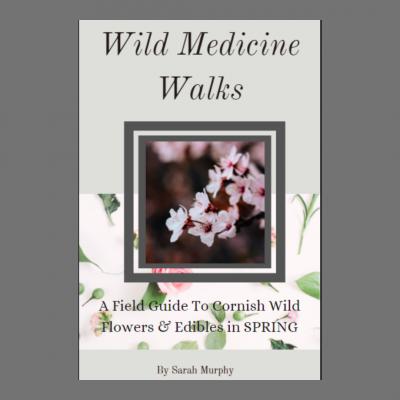 Wild medicine Walks Spring