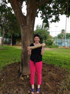 Sausage tree & me